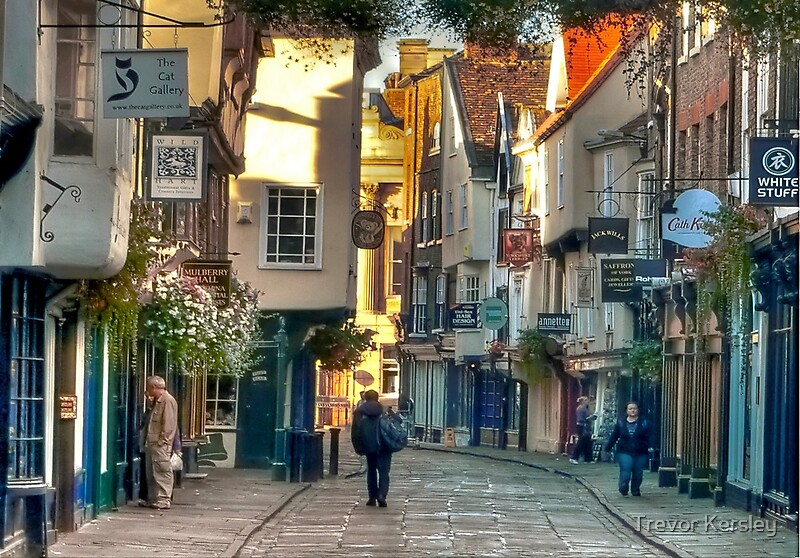 Quot Stonegate York England Uk Quot By Trevor Kersley Redbubble