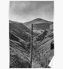 After The 2000 Cerro Grande Fire Los Alamos II Poster