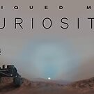 Piqued my Curiosity by Ray Cassel