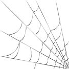 Cobweb Pillow by Sophersgreen