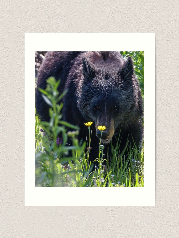 Alternate view of Protective Mother Art Print