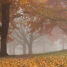 Autumn Fog 3 by elasita