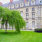 Chateau de Fontainebleau by Sama-creations