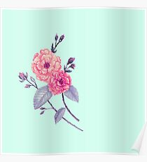 Rose, Soft Peach on Mint Poster