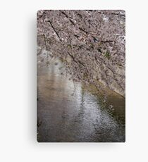 Ten thousand petals Canvas Print