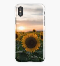 Sunflower and sunset iPhone Case