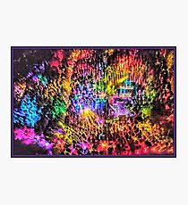 Electric Forest 2016 Photographic Print