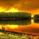 Blaze on Trout lake by BigAndRed