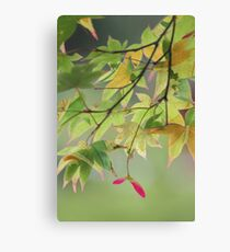 Patterned leaves Canvas Print