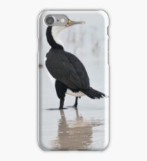 Three Cormorants iPhone Case/Skin