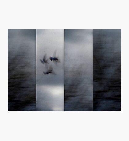 Into the Light of the Dark Black Night Photographic Print