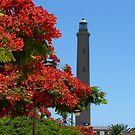 Lighthouse Flowers by jonvin