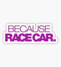 BECAUSE RACE CAR (6) Sticker