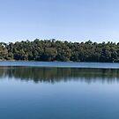 Lake Eacham, North Queensland - Panorama by Adrian Paul