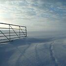 Snowy Gateway by Tom Carswell