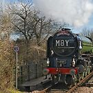 The Devon Belle at Templecombe by Tom Carswell
