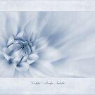 Dahlia 'Abridge Natalie' Cyanotype by John Edwards