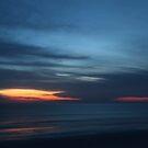 Early Morning Drama by Carol Bailey-White
