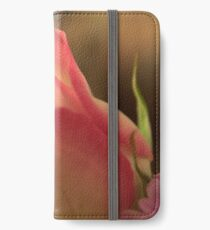 Soft Pink and White Rose, As Is iPhone Wallet/Case/Skin