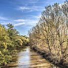 Llobregat River (Catalonia) by Marc Garrido Clotet