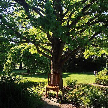 park, spring by fhjr2002
