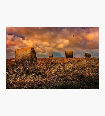 The Hayfield Photographic Print