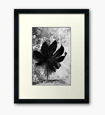 Independent Framed Print