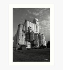 Rice Towers of Katy Texas Art Print
