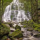 Nelson Falls - Wild Rivers National Park by TonyCrehan