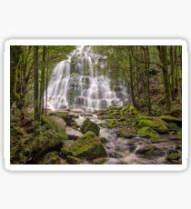 Nelson Falls - Wild Rivers National Park Sticker