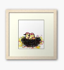 Two chicks in a nest Framed Print