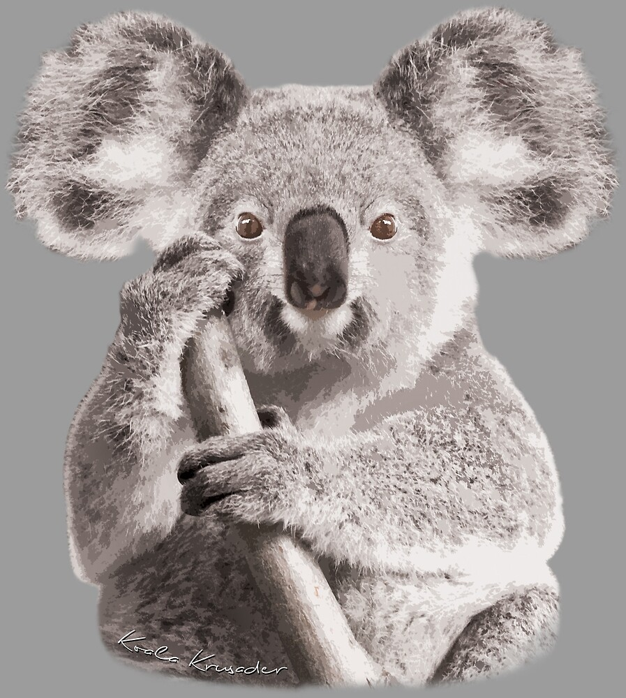 Quot Save The Koala Quot By Koalakrusader Redbubble