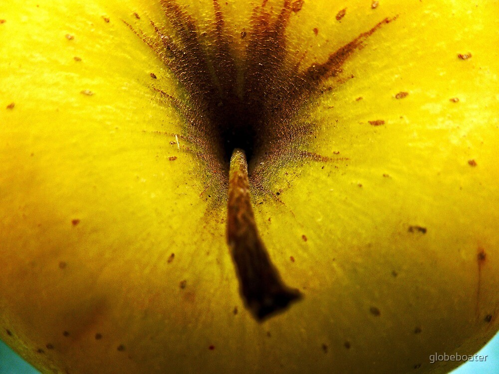 """""""Yellow"""" Delicious by globeboater"""