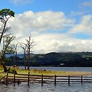 Ullswater Summer Tones by mikebov