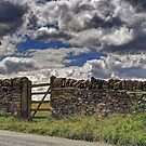 Dry Stone Wall and Gate by KarenM