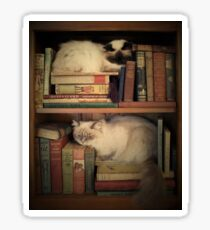 Library Cats Sticker