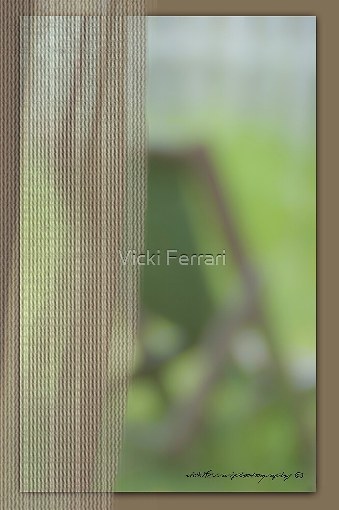The View From Inside © Vicki Ferrari by Vicki Ferrari