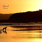 Sunset for one by Zoe Harris