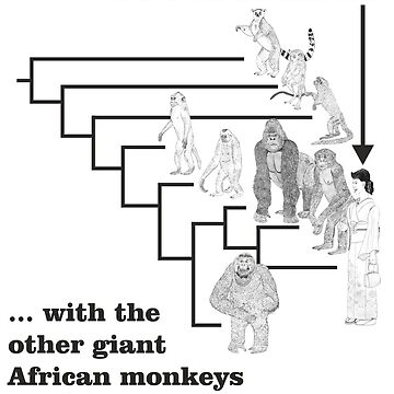 With the other giant African monkeys by TetZoo