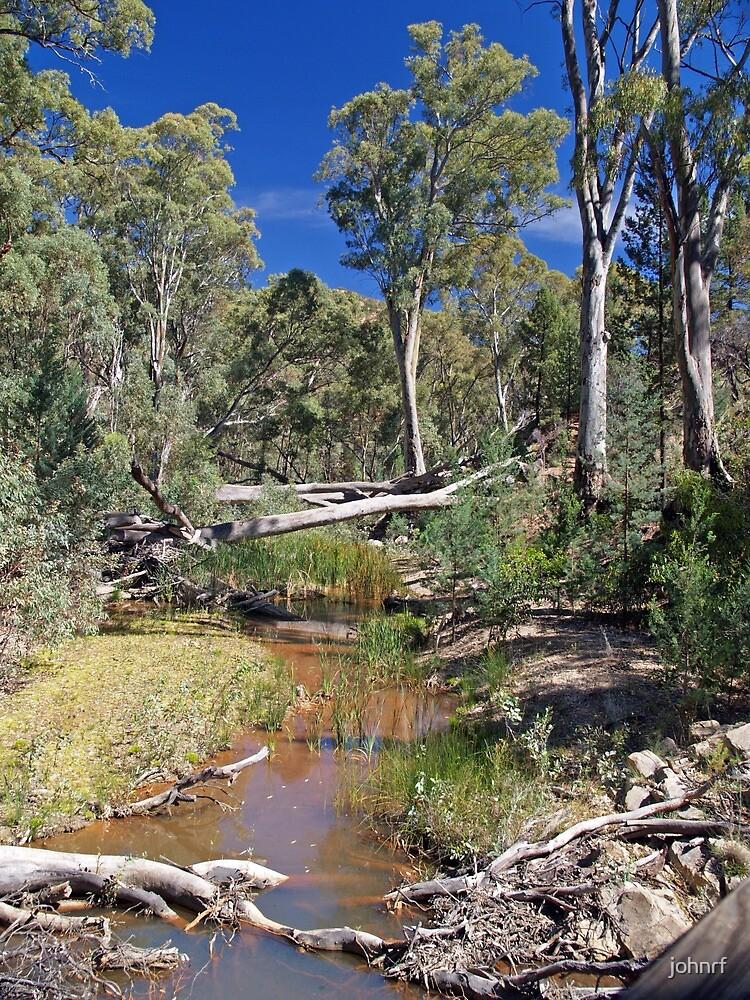 Creek within Wilpena Pound, South Australia by johnrf