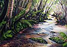Along the Creek, Blue Mountains by Linda Callaghan