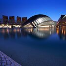 City of Arts and Science Museum, Valencia by pixsellpix