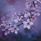 Blossoms on Purple by Jenny Chang