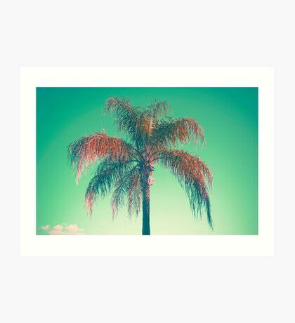 Rote Palme Kunstdruck