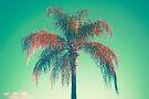 Rote Palme von josemanuelerre