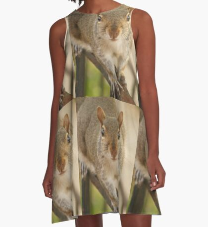 Squirrely A-Line Dress
