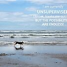 Unsupervised by Rebecca Cozart