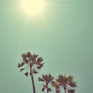 Beaming by RichCaspian