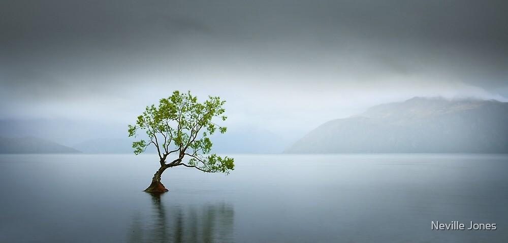Solitude by Neville Jones