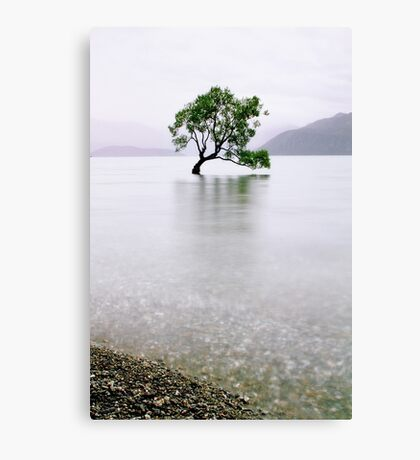 The Tree in the Lake II Canvas Print